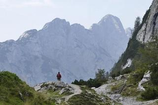 Alpe-Adria-4