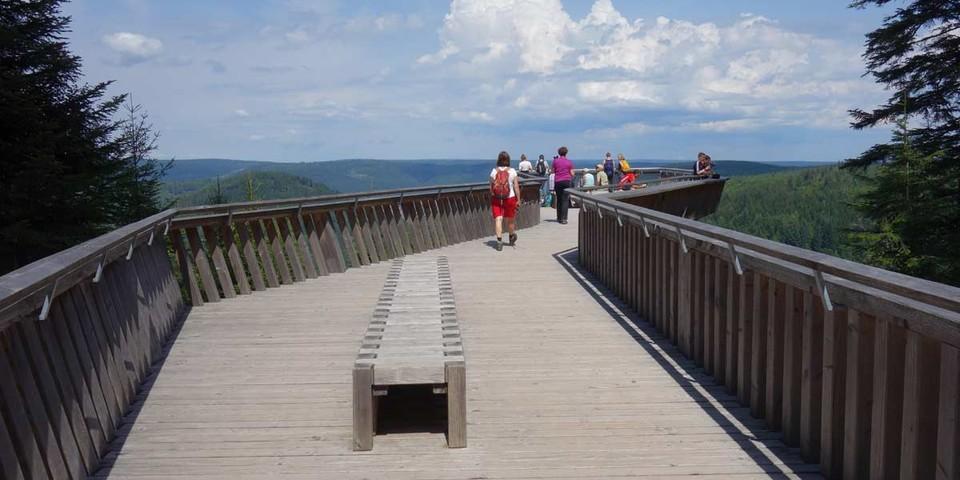 Die Aussichtsplattform Ellbachseeblick bietet herrliche Weitblicke. Foto: Joachim Chwaszcza