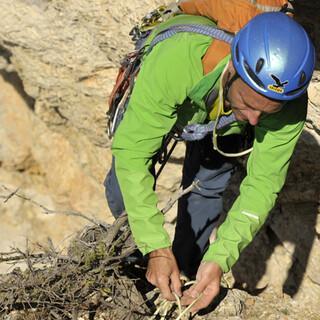 Bergsteigers Traum: Peter Hesslinger findet eine zuverlässige Zwischensicherung in der Hinterstoißer/Kurz.