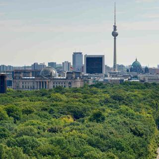 Der Tiergarten in Berlin © visitBerlin, Foto: Wolfgang Scholvien