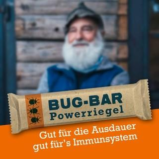 2003-Bug-bar 03 klein