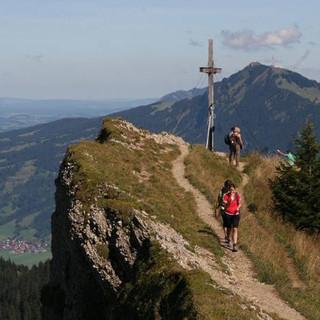 Auch Berg-Pferde freuen sich über schönes Berg-Wetter (Foto M. Pröttel)