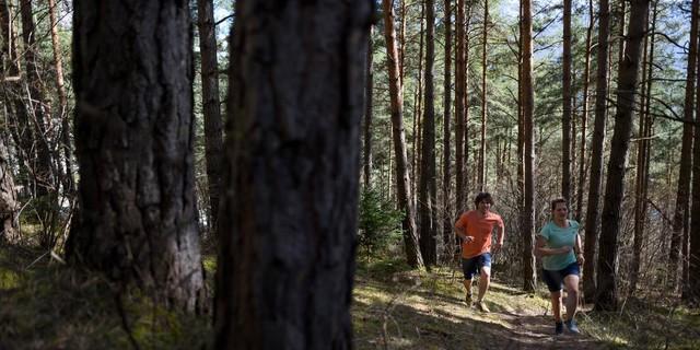 Trailrunning – im Laufschritt auf den Berg, Foto: DAV/Wolfgang Ehn