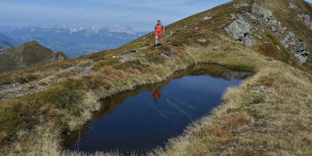 Kleine Tümpel hat es im Granitgebirge überall, sogar knapp unter dem Gipfel des Geißsteins. Foto: Andi Dick