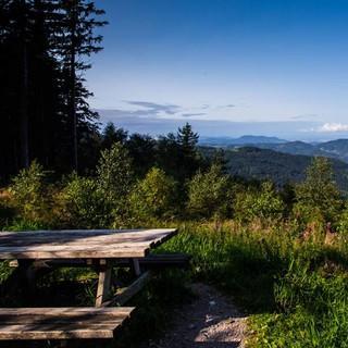 Wandern-im-Schwarzwald-Rainer-Sturm-pixelio