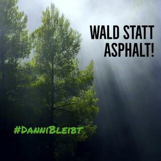 Der Dannenröder Forst, Foto: JDAV