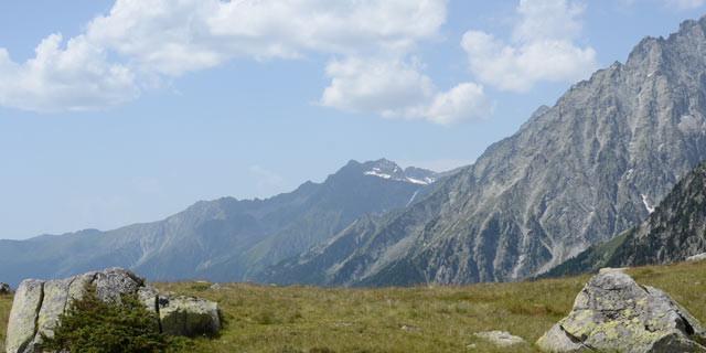 Zum Staller Sattel - Ausklang: Gemütlich führen die letzten Meter zum Staller Sattel durch Wiesenlandschaft; darüber steht der Wildgall.