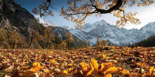 Großer Ahornboden. Foto: Heinz Zak