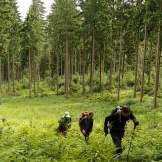 Aktion Schutzwald - Auf geht's zum Einsatzort, Foto: DAV/Arvid Uhlig