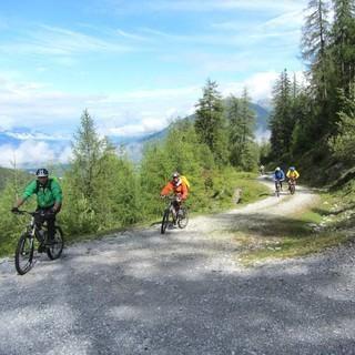 Innsbrucker Almenweg - Auf dem Innsbrucker Almenweg hoch über Wipp- und Inntal kämpft die Sonne gegen die Wolken und die Alpencrosser gegen die Steigung.