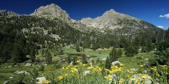 Das Vall der Gerber liegt im Norden des Nationalparks Aigüetortes i Estany de Sant Maurici. Foto: Annika Müller