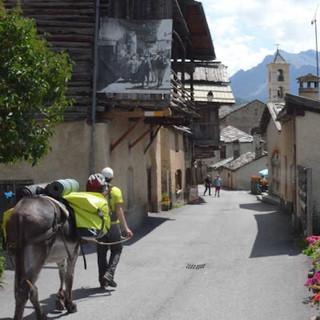 Viele Häuser in Saint Véran stammen aus dem 19. Jahrhundert. Mit Esel passen wir hier gut hinein. Foto: Solveig Michelsen