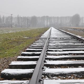 Lager Birkenau: Ankunft&#x3B; (c) Jonas Freihart