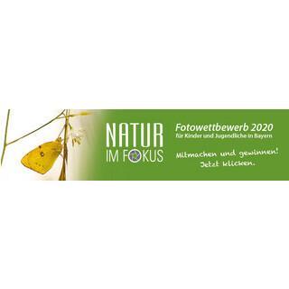 NIF-Online-Banner 2020