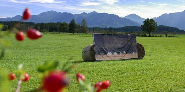 """Fotoausstellung """"Das offensichtlich Unsichtbare"""" im Murnauer Moos. Foto: Nadine Ormo"""