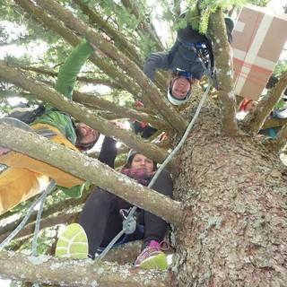 Jugendliche bei einer erlebnispädagogischen Baumaktion. Foto: JDAV / Roland Oppermann