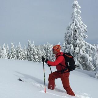 Einfacher geht's im Lechtal selten: Das Galtjoch ist einer der beliebtesten Skiberge hier. Foto: Luis Stitzinger, Alix von Melle