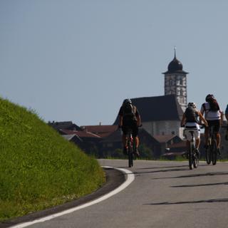 Mountainbiker auf der Straße - Vorsicht vor dem Autoverkehr!