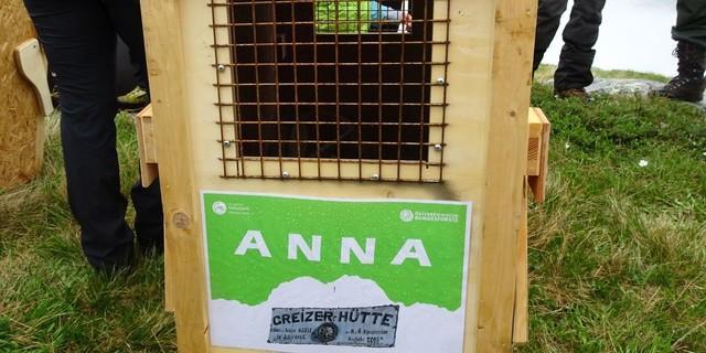 Die Greizer Hütte als Pate für Geiß Anna, Foto: DAV