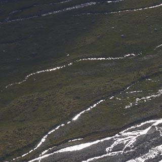 Schwemmböden der Sulze mit den verästelten Bachläufen - Nahe der Amberger Hütte, Foto: Mark Zahel