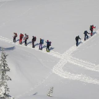 Ski- und Schneeschuhtouren im Kleinwalsertal - Jedem sein Plaisirchen: Ski- wie Schneeschuhgänger finden ihre eigene Spur.