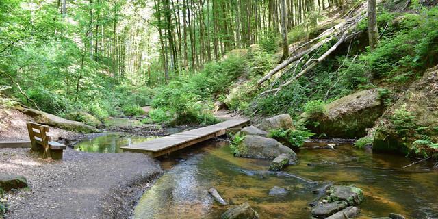 Der Weg führt durch die romantische Karlstalschlucht. Foto: Günter Kromer