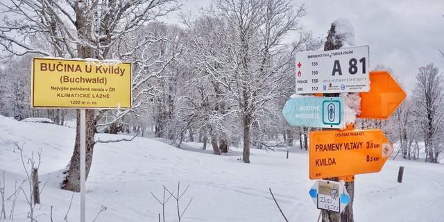Vom bayerischen Nationalpark in das tschechische Schutzgebiet Šumava und zurück: Die grenzüberschreitenden Touren bieten heute viel Abwechslung und Erleben. Foto: Joachim Chwaszcza