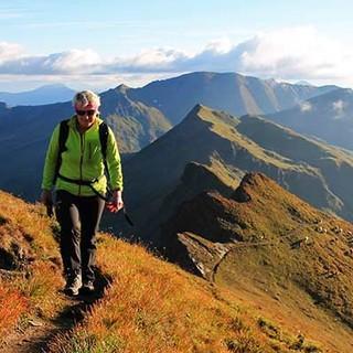 Auf dem Tauernhöhenweg. Foto: Silvia Schmid
