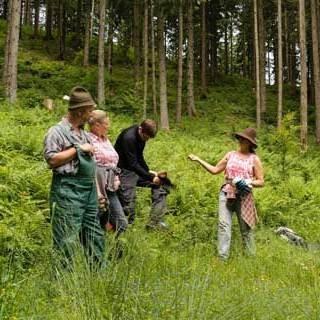 Aktion Schutzwald 2016 Uhlig