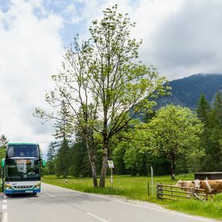 Der Bergbus soll für eine friedlichere Koexistenz zwischen Gästen und Gastgeber*innen sorgen. Foto: Solveig Eichner