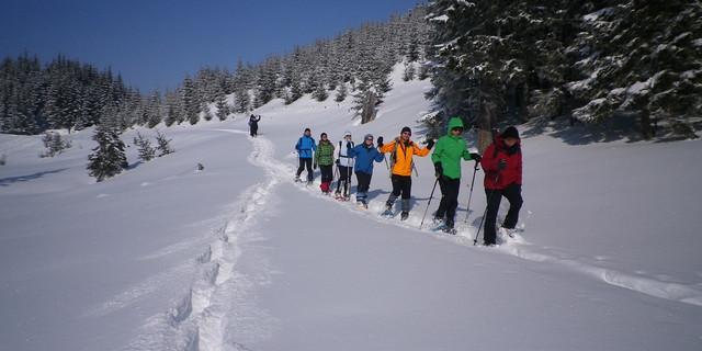 Am Wiesler Berg oberhalb von Zöblen finden sich oft gute Schneebedingungen vor allem für leichte Übungstouren. Foto: Thomas Krobbach