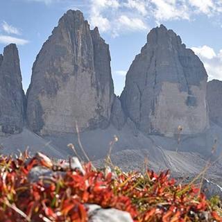 Weltberühmt und Weltnaturerbe: Die Drei Zinnen sind das Wahrzeichen des Hochpustertales und der gesamten Dolomiten. Foto: Thorsten Brönner