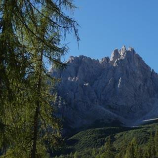 Rifugio Giaf©Georg Hohenester - Das Rifugio Giaf steht oberhalb Forni di Sopra auf einer kleinen Waldlichtung. Im Hintergrund ist die Forcella dei Pecoli zu sehen, die nur im Winter mit Ski begangen wird.     Foto: Georg Hohenester