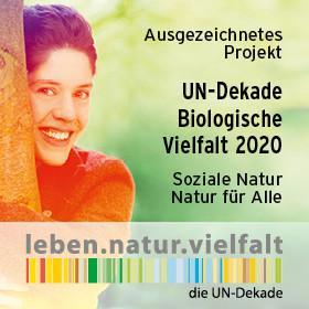 191019 028 UN-Dekade Gewinnerlogo Ausgezeichnetes Projekt-2020 280x280px RZ01