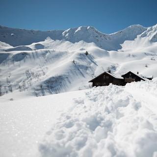 Skitourengehen - auch mit Snowboard möglich. Bildrechte: DAV/Daniel Hug