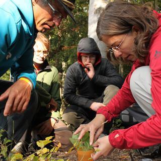Umweltbildung in der Trainerausbildung, Foto: DAV/Reich