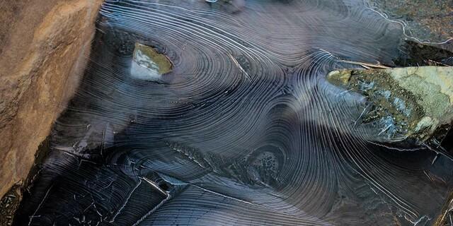 Jahresringe? Nein, Froststrukturen auf knapp 3000 Metern Höhe, Foto: Stefan Neuhauser