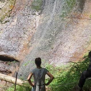 Im Abstieg zum Sankenbachsee kreuzt man einen mittels Stauschleuse reguliergbaren Wasserfall. Foto: Joachim Chwaszcza