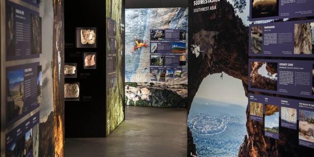 Blick in den Ausstellungsraum, Foto: Vertical Life