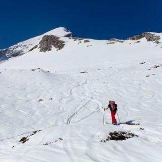 Alpspitze / Am Bernadeienrücken