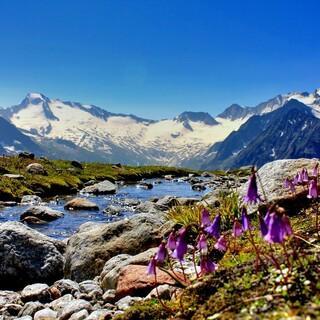 Zillertaler Alpen-DAV-Manuel Daum