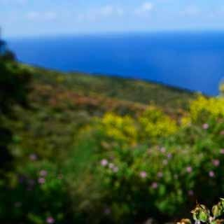Die Äolischen Inseln zeigen sich vor allem im Frühjahr von ihrer bunten Seite.