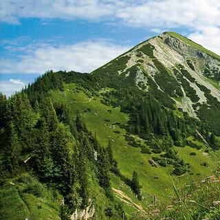 Bergsteigerdörfer Schleching & Sachrang: Blumenberg Geigelstein. Foto: Touristik-Information Schleching/Claudia Irlacher