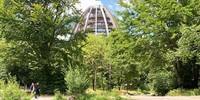 """Im Besucherzentrum """"Hans-Eisenmann-Haus"""" in Neuschönau führt der Baumwipfelpfad mit seinem eiförmigen Aussichtsturm in die Höhe. Foto: Joachim Chwaszcza"""