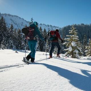 Ski Touring, Copyright: DAV/Daniel Hug