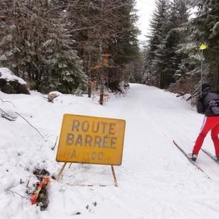 """Route Barrée! - """"Strecke gesperrt!"""" - Solche Schilder sollte man auch als Langläufer ernst nehmen.&nbsp&#x3B;Sonst kann es sein, dass der flotte Downhill unvermittelt in einer Waldbaustelle schmerzhaft endet."""