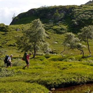 Drei schweigsame Norweger im Grünen, das war's für heute an Begegnungen. Foto: Antes & Antes