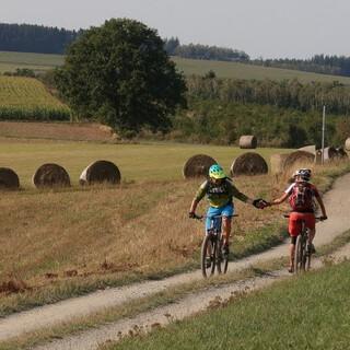 Weitläufige Landschaft an der Grenze zu Luxemburg (bei Stoubach). Foto: Traian Grigorian