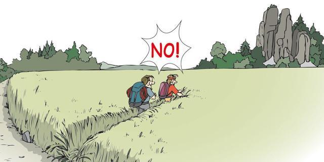 So nicht! Vorhandene Wege nutzen! Zeichnung: Sojer