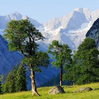 Foto: Naturpark Karwendel/S. Wolf